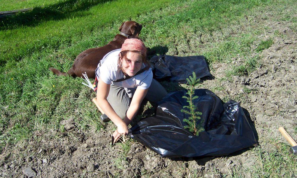 Zoothérapie agricole