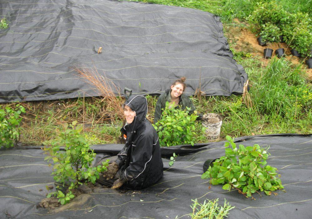Les plantes sont bien arrosées par la pluie et les employés aussi...