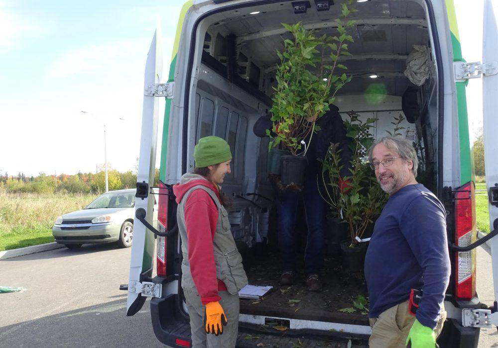 Réception des plantes pour la plantation au boulevard René-Lévesque en 2019