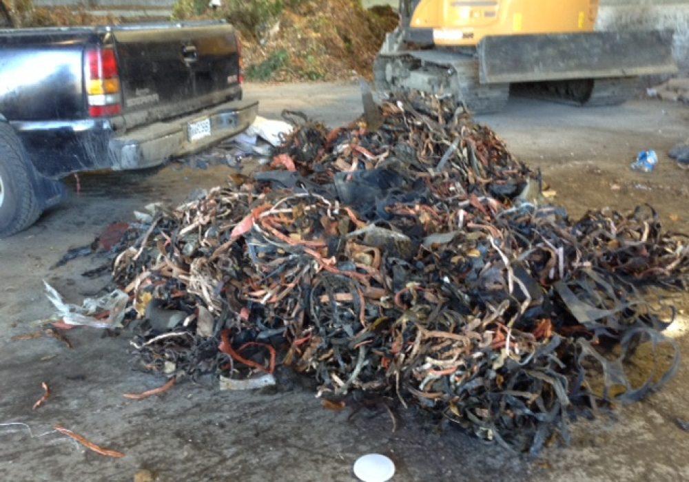 Tas de déchets ramassés lors d'un nettoyage au ruisseau Longpré