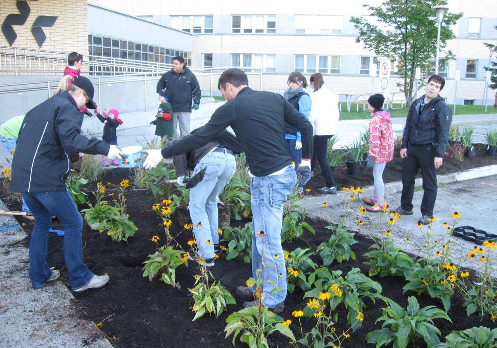 Plantation au CHUS de Sherbrooke