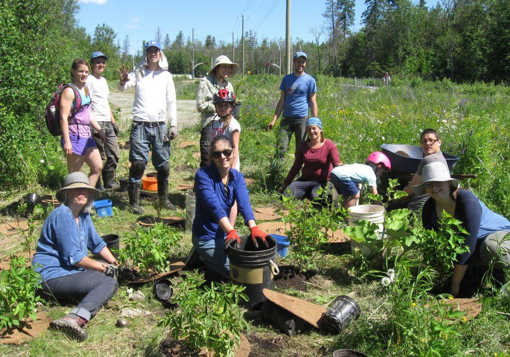 Bon groupe de bénévoles au ruisseau Lyon à Sherbrooke