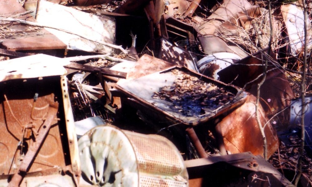 Marais de la rivière aux Cerise à Orford 1996