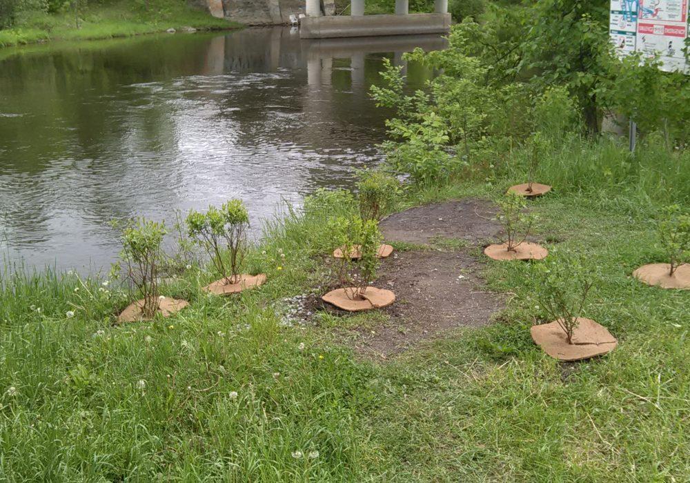 Aménagement riverain