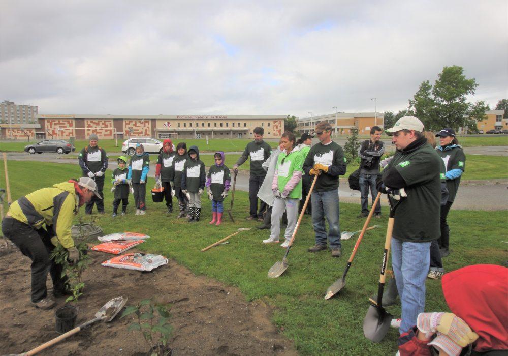 Plantation avec des employés de la banque TD